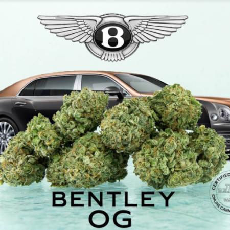 Bentley OG